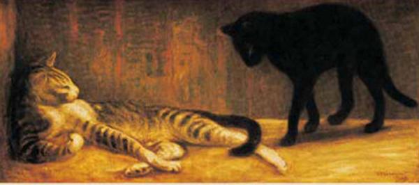 chats de steinlein,