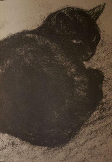 chats de steinlein,chats,bmc,
