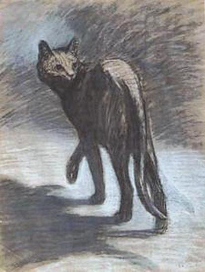 chats de steinlein,bmc,