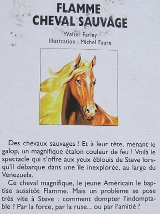 magnifique portrait de cheval