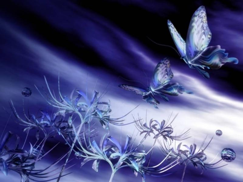 belles images  papillons pour creation