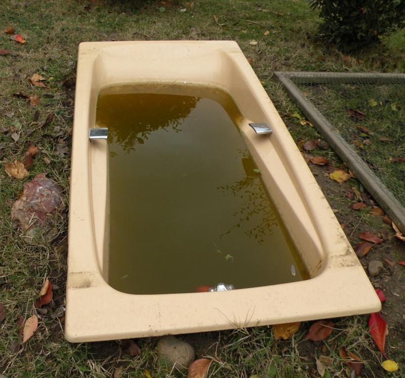 Que Faire Avec Une Vieille Baignoire ma baignoire en bassin