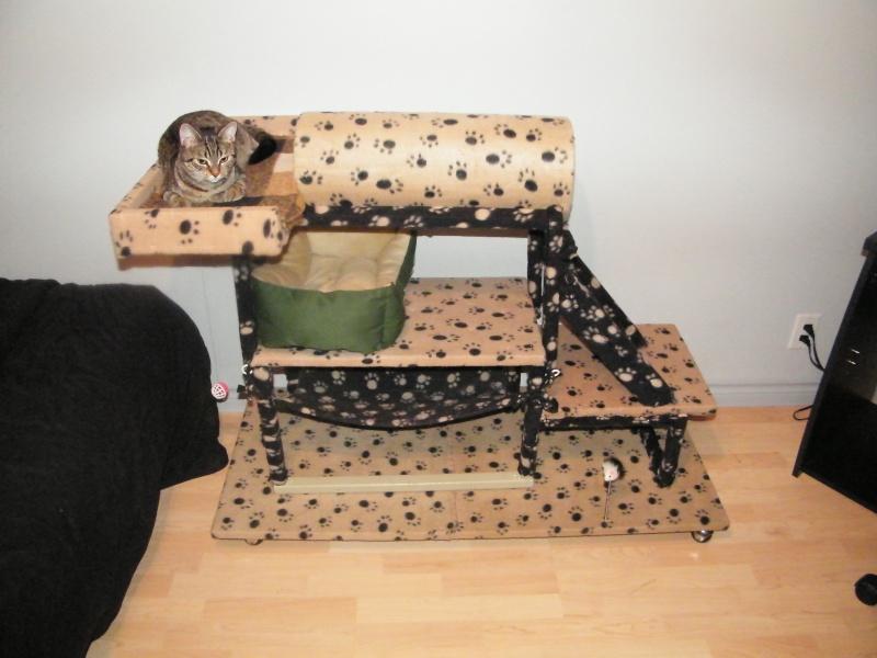 construction d 39 un arbre chats. Black Bedroom Furniture Sets. Home Design Ideas
