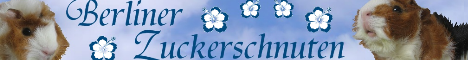 www.berliner-zuckerschnuten.de.tl