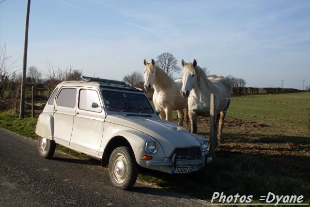La Citroën 2CV et dérivés