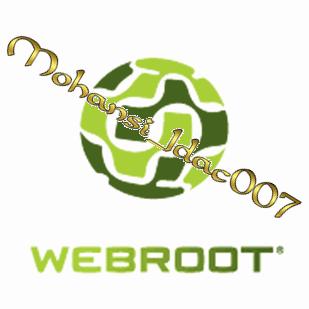webroot_8 avg_2013,بوابة 2013 webroo10.png