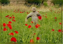 Un épouvantail parmi les fleurs dans MOMENT DE VIE apouva10