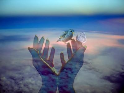 Le rêve est cadeau dans MOMENT DE VIE la-vie10