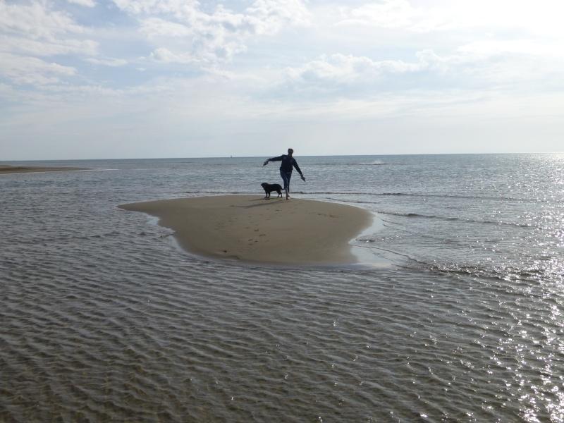 Le banc de sable  dans GRUISSAN p1040010