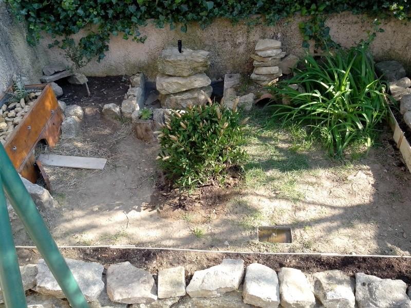 Renseignement pour future tortue terrestre for Amenagement jardin 400m2