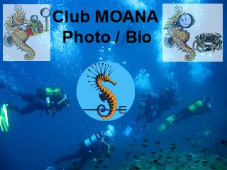 SECTION BIOLOGIE ET PHOTOS DU CLUB MOANA